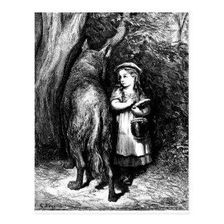 小さ赤乗馬フード写真8 ポストカード
