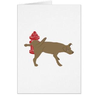 小便をする犬 カード