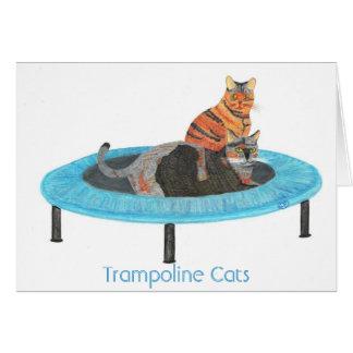 小型トランポリン猫2の挨拶状 カード