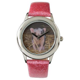 小型ブタ 腕時計