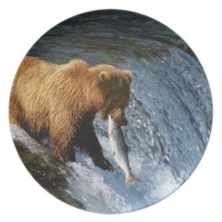 小川のアラスカのヒグマの伝染性のサケ プレート
