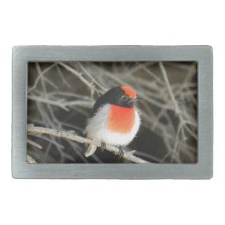 小枝に坐っている小さいロビンredbreastの鳥 長方形ベルトバックル