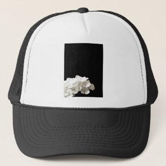 小柄く白いアジサイの花の黒の背景 キャップ