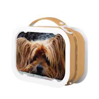 小犬のお弁当箱 ランチボックス