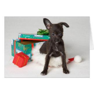 小犬のクリスマスプレゼント カード