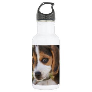 小犬のビーグル犬 ウォーターボトル