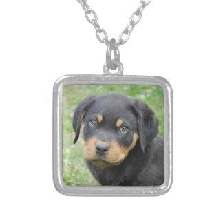 小犬のMcDogfaceのロットワイラーの子犬 シルバープレートネックレス