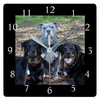 小犬家族の写真の柱時計 スクエア壁時計