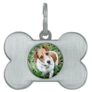 小犬 ペットネームタグ