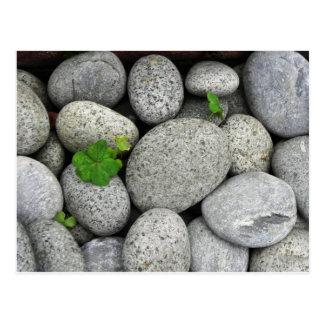 小石 はがき