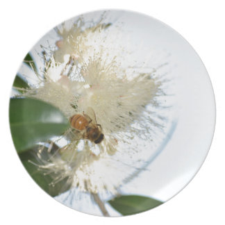 小麦粉田園クイーンズランドオーストラリアの蜂 プレート