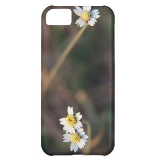 少し白い花 iPhone5Cケース
