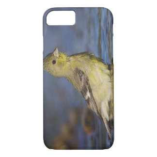 少しGoldfinch、女性Carduelisのpsaltria iPhone 8/7ケース