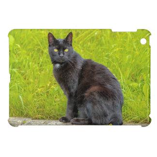 屋外黒猫の着席 iPad MINIカバー