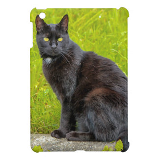 屋外黒猫の着席 iPad MINIケース