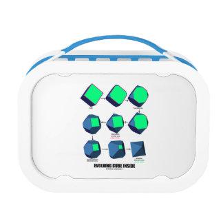 展開の立方体の内部(数学及び幾何学) ランチボックス