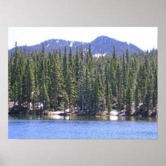 山のフードの国有林オレゴンのPotatoeのビュート ポスター