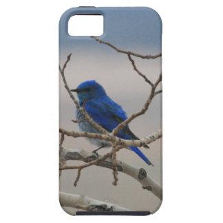山のブルーバード iPhone SE/5/5s ケース