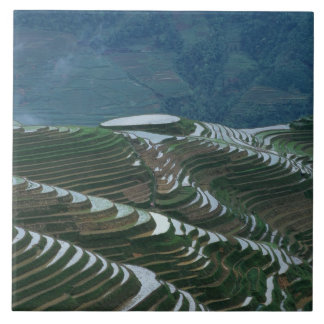 山の米台地、2の景色 タイル