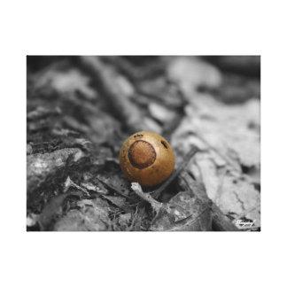 山の蟻 キャンバスプリント