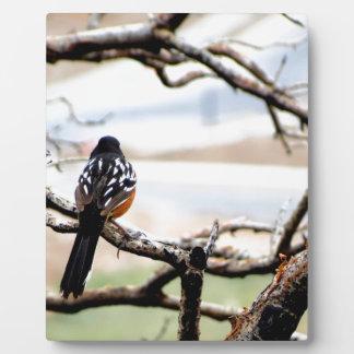 山の鳥 フォトプラーク