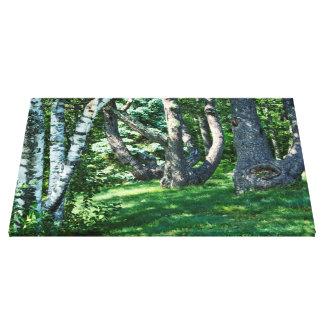 山腹の木 キャンバスプリント