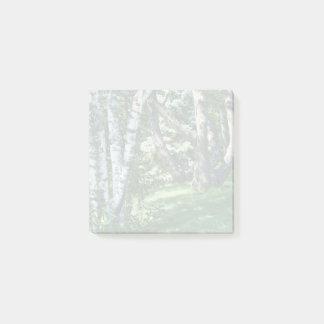 山腹の木 ポストイット