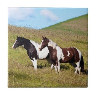 山腹の馬 タイル