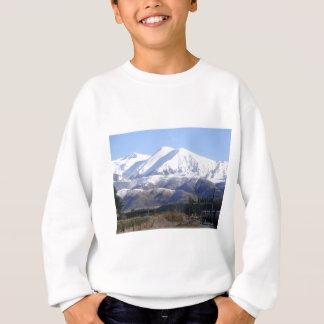 山 スウェットシャツ
