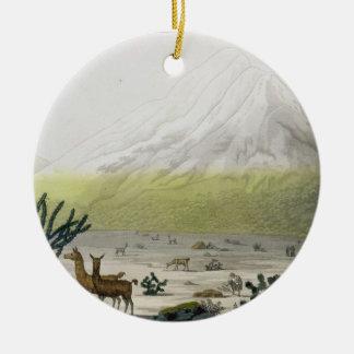 山Chimborazo、「Le Costume Ancienからのエクアドル、 セラミックオーナメント