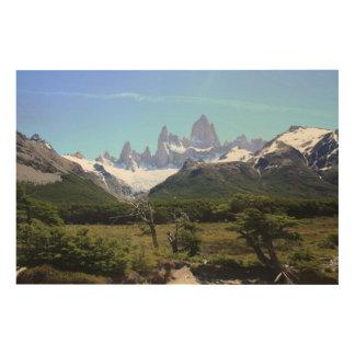 山Fitzローイの眺め ウッドウォールアート