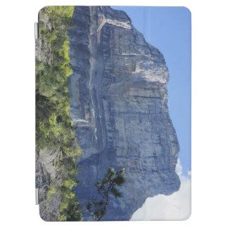 山Granier iPad Air カバー
