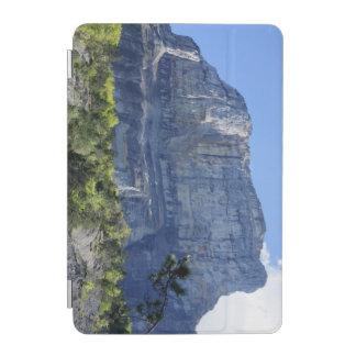 山Granier iPad Miniカバー