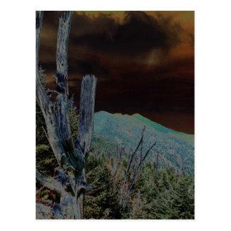 山Mitchell、ノースカロライナ ポストカード