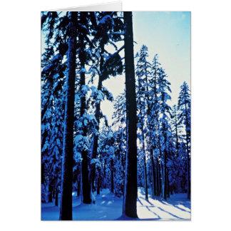 山Shasta カード