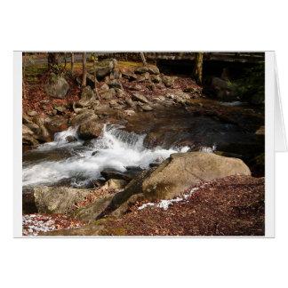 岩が多い流れ カード