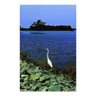 岩が多い海岸ラインの白い白鷺 便箋
