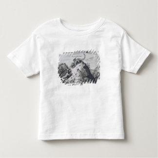 岩山が付いている江西省の山は知っています トドラーTシャツ