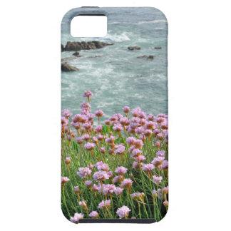 崖で育つアルメリアのmaritimaのピンクの海 iPhone SE/5/5s ケース