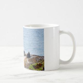 崖のカモメ コーヒーマグカップ