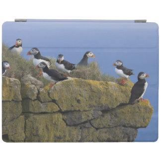 崖のニシツノメドリ(Fraterculaのarctica) iPadスマートカバー
