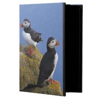 崖のニシツノメドリ(Fraterculaのarctica) iPad Airケース