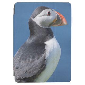 崖のニシツノメドリ(Fratercula Arctica) iPad Air カバー