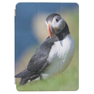 崖2のニシツノメドリ(Fratercula Arctica) iPad Air カバー