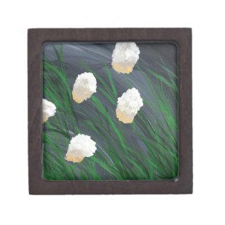 嵐の花 ギフトボックス