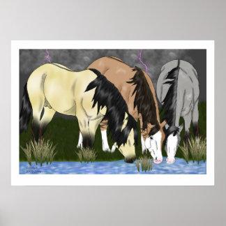 嵐の馬の前 ポスター