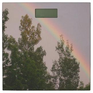 嵐健康な重量日後の虹 体重計