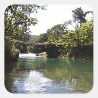 川および雨林 スクエアシール