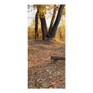 川による秋 ラックカード