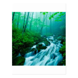 川のケンタッキーの夏 ポストカード